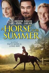 horse summer